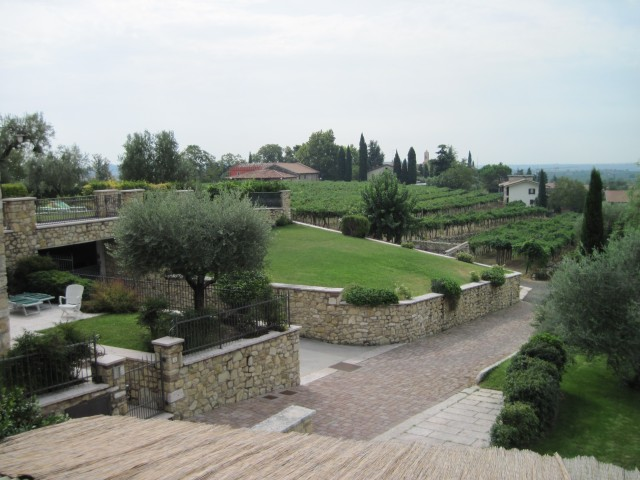 La Caminella Vineyards (Linda C)